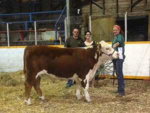 4-H Steer purchased at Foxwarren Fat Stock Show