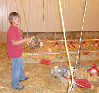 Vincent monitoring grower barn – 2009